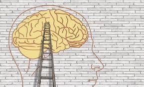 formation et coaching pour entreprise, intelligence intentionnelle